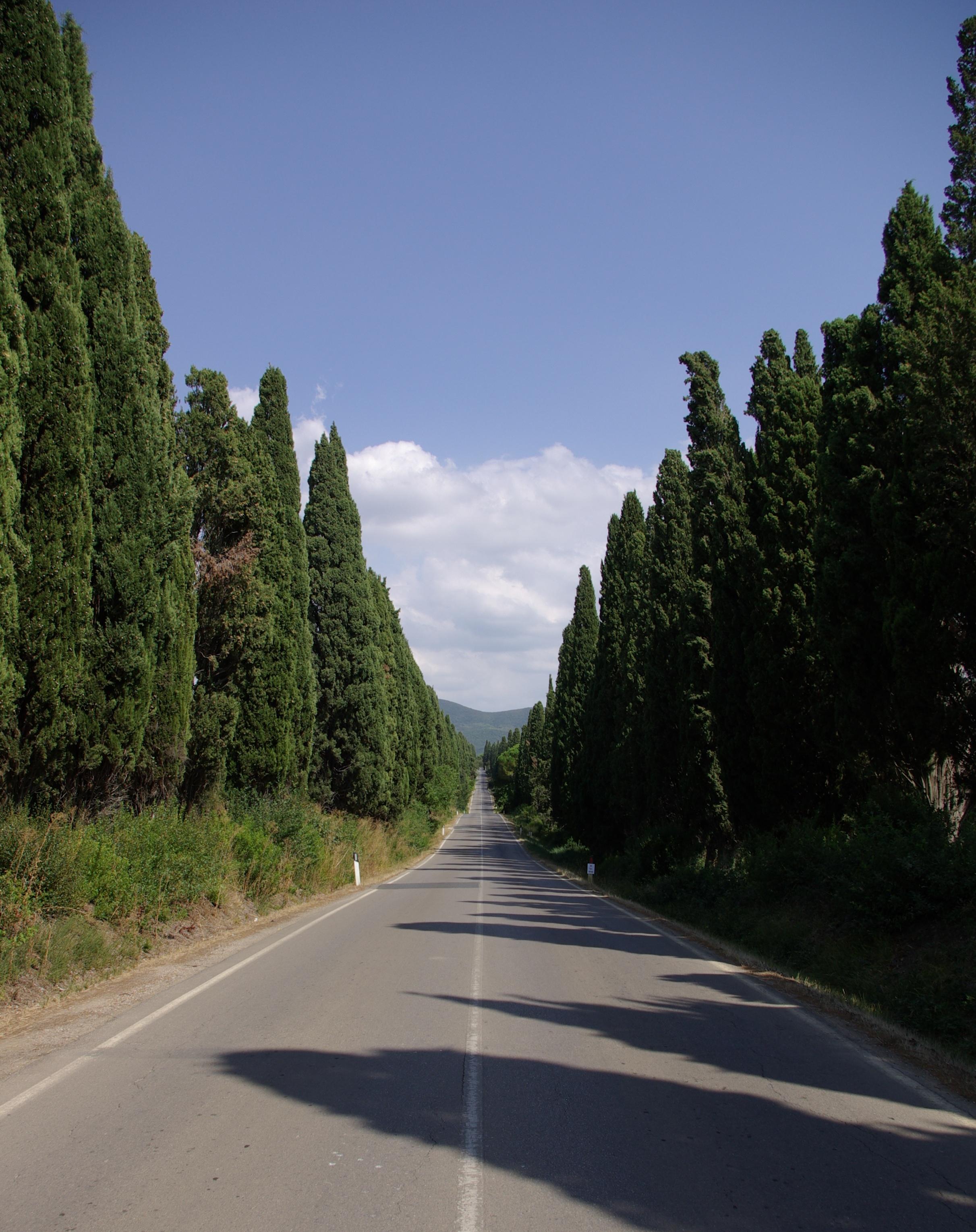 Bolgheri_Viale_dei_Cipressi_001
